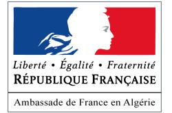 Logo Amb Fr à Alg