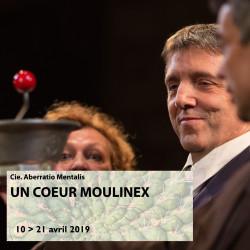 20 - Un coeur Moulinex