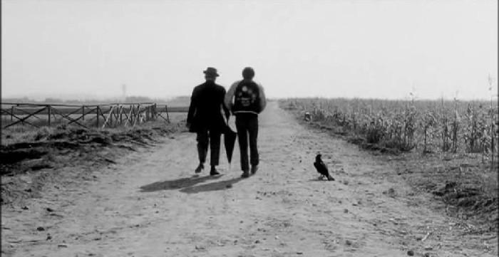 Uccellacci.e.uccellini.Pasolini - pour site