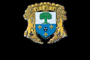 logo-verriereslebuisson
